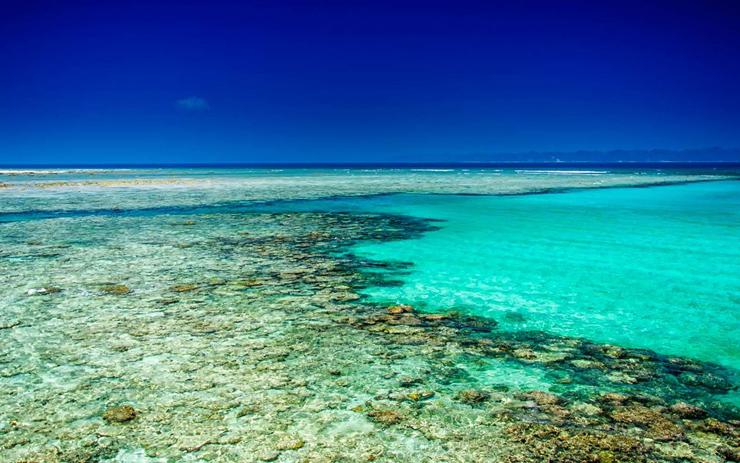 האי האוולוק, הודו