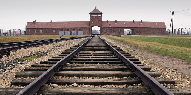 קרטל המשלחות לפולין: נשקלת העמדה לדין של 14 חשודים בהם 4 חברות