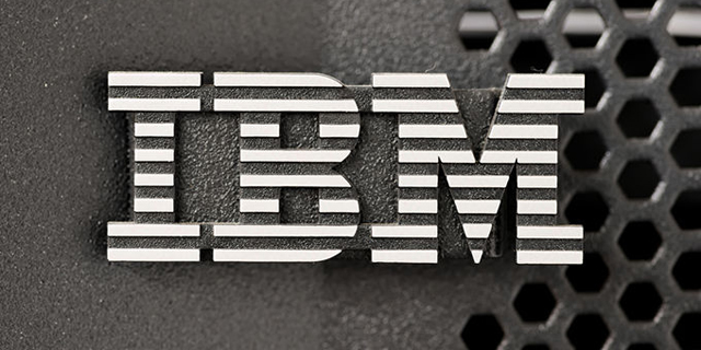 IBM Buys Stealth-Mode Networking Startup