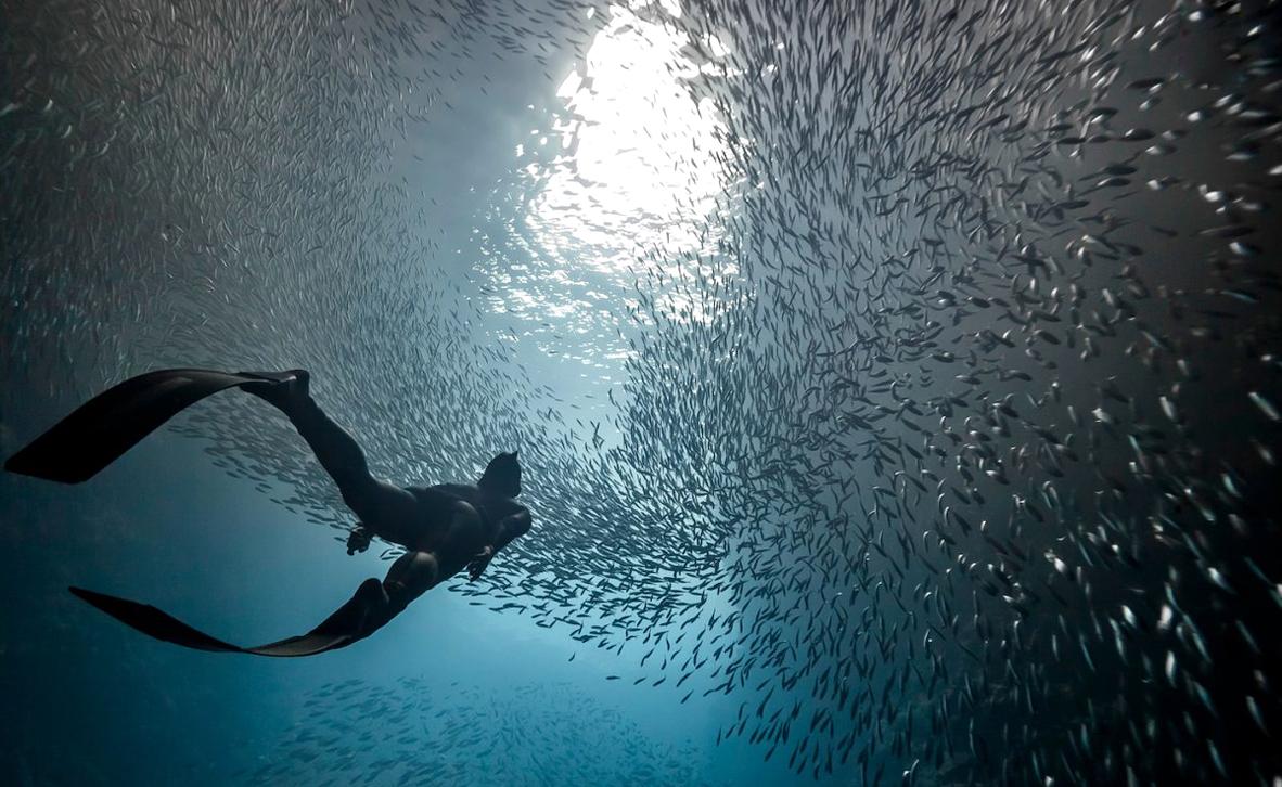 צילום: Marc Henauer / National Geographic Travel Photographer of the Year Contest