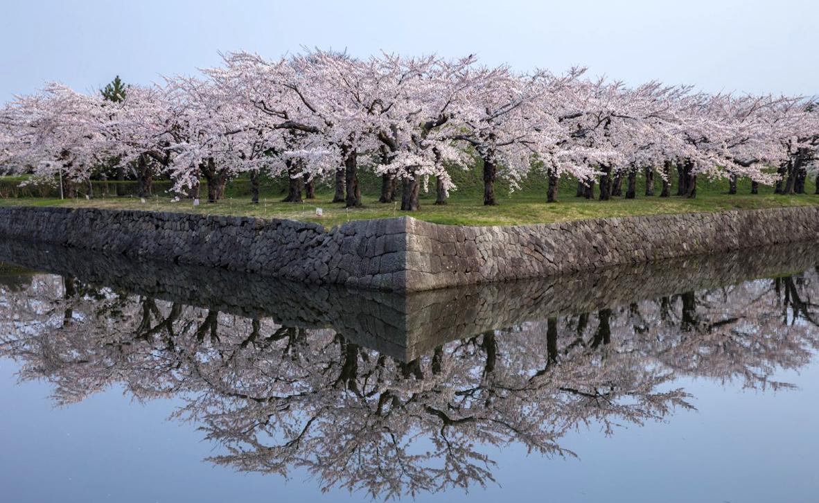 צילום: Hiroshi Tanita / National Geographic Travel Photographer of the Year Contest
