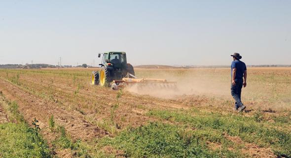 Israeli farmland (illustration). Photo: Israel Yosef