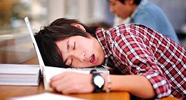 שינה על מחשב סטודנט, צילום: sleepcity