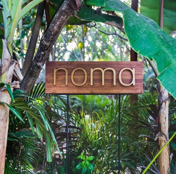 מסעדת נומה בטולום, מקסיקו, צילום: instagram / cityfoodsters