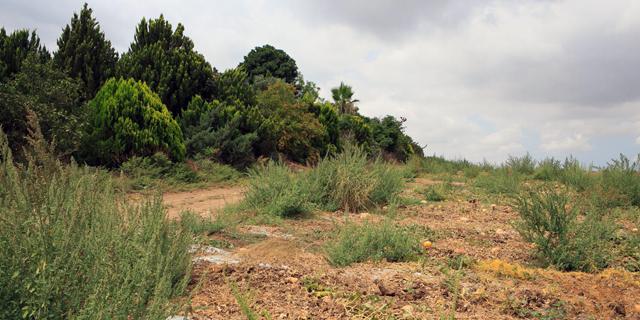 האם קרקע שהופקעה ולא נעשה בה שימוש תוחזר לבעליה המקוריים?