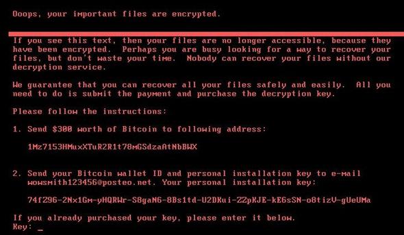ההודעה שמציגה נוזקת הכופר פטיה, צילום: The Hacker News