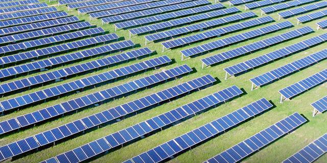 פאנלים סולאריים של אנלייט, צילום: אתר החברה