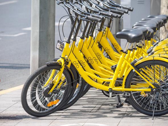 אופני ofo ממתינים למשתמשים
