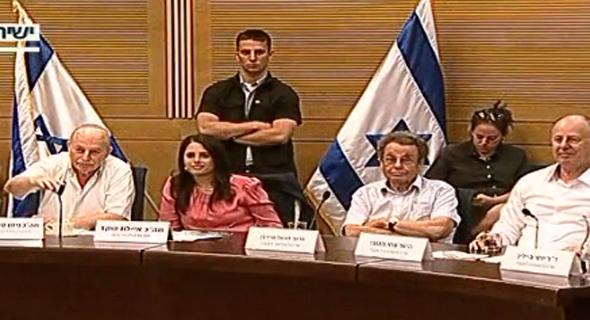 ועדת החוקה על הסניוריטי , צילום: ערוץ הכנסת