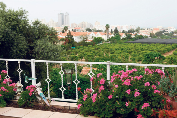 נוף ממרפסת באביחיל, כשברקע נתניה. בתוך עשור 100 יישובים כפריים יהיו בסכנת היעלמות
