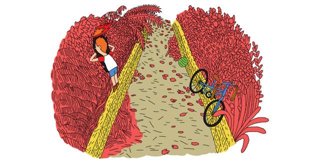 בתנועה: ירושלים של ורדרד
