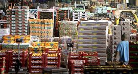 שוק סיטונאי ב צריפין, צילום: נמרוד גליקמן