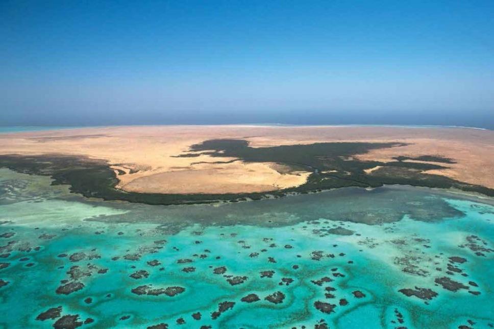 שטח הפרויקט כולל לגונה בת 50 איים קטנים, צילום: Twitter / theredseaproject
