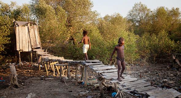 שירותי בור במדגסקר. קקי של 800 איש מייצר 6 טון דשן