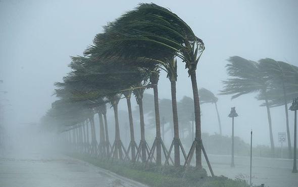 הוריקן אירמה מגיע לפלורידה