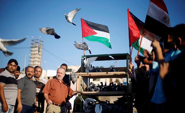 פלסטינים ברצועת עזה משחררים יונים בעקבות ההצהרה על פיוס בין חמאס ל פתח, צילום: רויטרס