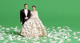 מוסף חתונה מתחתנים נישואים נישואין נשואים חתן כלה בובות בובה, צילום: shutterstock