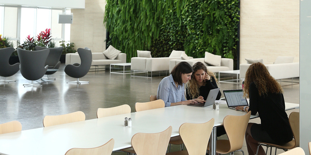 משרדי אפל בהרצליה, צילום: אוראל כהן