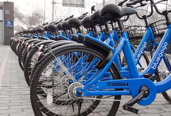 האופניים של בלוגוגו. הובסו בנוקאאוט, צילום: pcpop.com