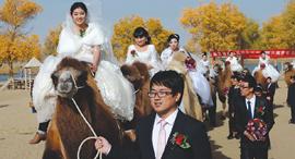 13.12.17 זוגות טריים בחתונת המונים במחוז שינג'יאנג סין, צילום: רויטרס