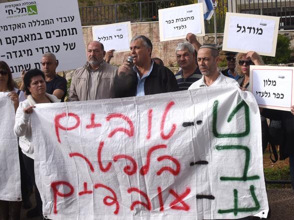הפגנה עובדי טבע ב קריית שמונה, צילום: אביהו שפירא