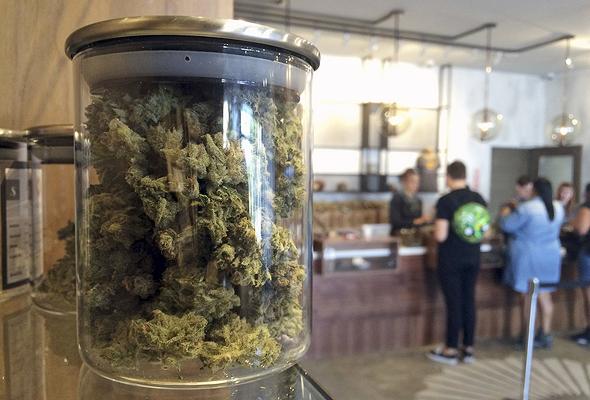 חנות לממכר מריחואנה בסן פרנסיסקו, צילום: איי פי