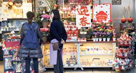 חנות כל בו כלבו ב טוקיו, צילום: רויטרס