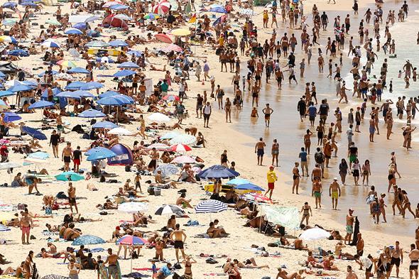 רוחצים בחוף הים בסידני. חום שלא נמדד מזה 79 שנה
