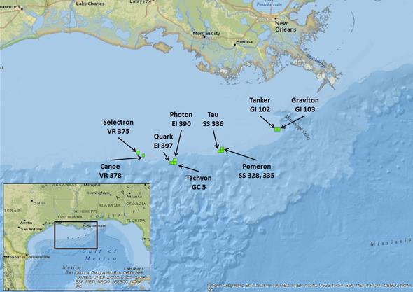 מפת הקידוחים במפרץ מקסיקו