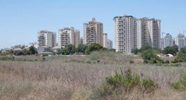 שטח קרקע (אילוסטרציה), צילום: אוראל כהן