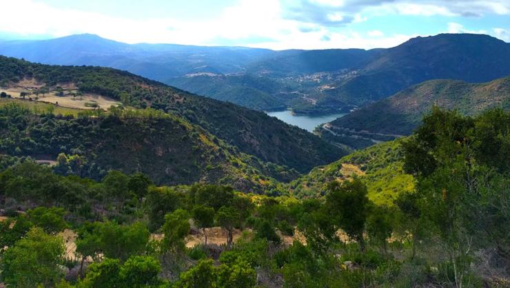"""הכפר אולולאי. היוזמה היא חלק מפרויקט איטלקי שנקרא """"בית ביורו"""", אשר כולל נכסים ברחבי סיציליה, טוסקנה ואברוזו"""