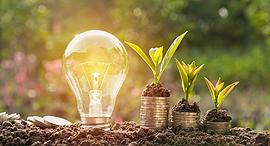 אנרגיה מתחדשת ירוקה MIT חדשנות יזמות, צילום: שאטרסטוק