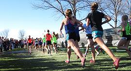 ריצה מרתון זירת הבריאות, צילום: farmama/Pixabay