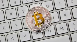 ביטקוין האקרים סייבר קריפטו מטבעות וירטואליים, צילום: שאטרסטוק