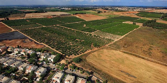 הקרקע בחדרה שמחירה זינק תוך ארבע שנים מ־350 אלף שקלים לדונם ליותר ממיליון