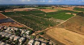 קרקע בנימינה גבעת עדה זירת הנדלן, צילום: באדיבות קרקעות ישראל
