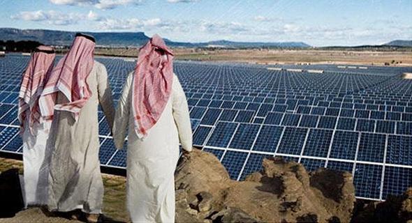שדה סולרי ערב הסעודית סופטבנק, צילום: linkedin/Jake Zhang