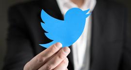 טוויטר, צילום: שאטרסטוק