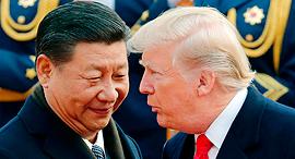 טראמפ וג'ינפינג, צילום: איי פי
