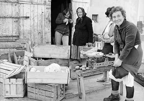 חנות מכולת בשנות ה-50