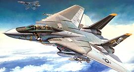הקברניט F14 מטוס קרב