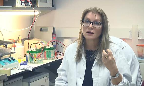 פרופ' שרית לריש מהחוג לביולוגיה של האדם באוניברסיטת חיפה