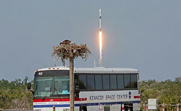 שיגור הפלקון 9, צילום: TNS