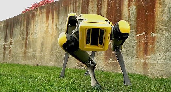 רובוט כלב ספוט של בוסטון דיינמיקס, צילום: Boston Dynamics