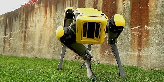 הכינו את הכיס: בוסטון דיינמיקס משיקה את הרובוט-כלב שלה בעלות של 75 אלף דולר