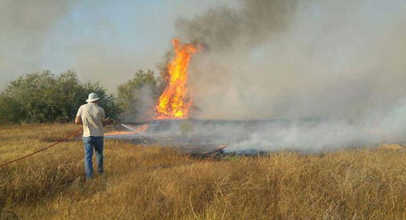 שריפה ב שמורת טבע נחל הבשור, צילום: גלעד גבאי רשות הטבע והגנים
