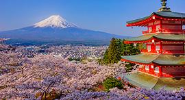 יפן הר פוג'י, צילום: שאטרסטוק