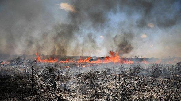 שריפה נוספת בעוטף עזה, היום, צילום: רויטרס