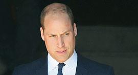 הנסיך ויליאם, צילום: איי פי