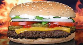 המבורגר ג'אנק פוד דיאטה, צילום: shutterstock